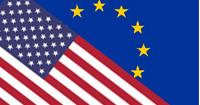 USA/EU Flaggen