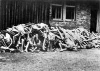 Leichen im KZ-Buchenwald Foto: LMZ-BW